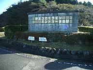 nz0015ta.jpg